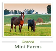 Search Mini Farms