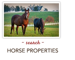 search horse properties