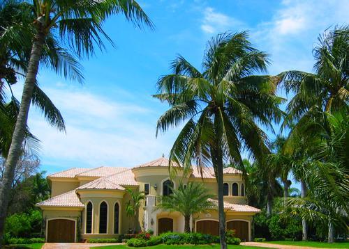 About South Florida Boca Raton Boynton Beach Coconut