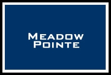 Search all available homes for sale in Meadow Pointe, Tampa, FL