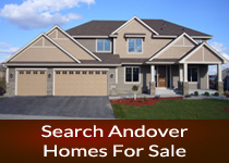 Andover MN homes for sale