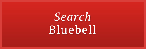 search bluebell
