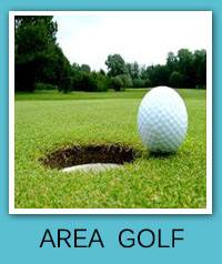 Learn more about Area Golf in Sarasota, Lakewood Ranch, Bradenton, Barrier Islands