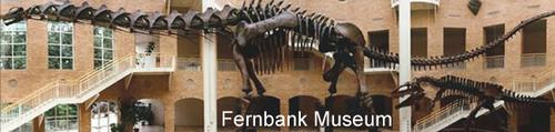 Fernbank Museum of Science