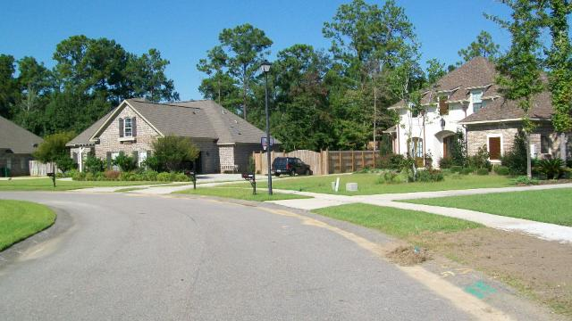 Riverwood Estates - Theodore AL - Street Scene
