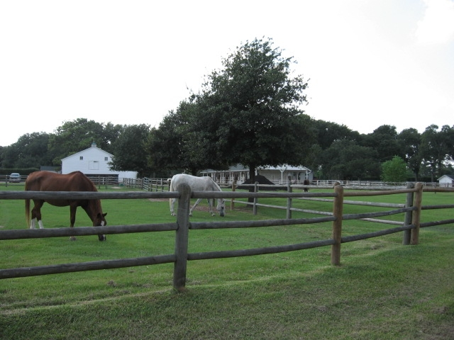 Gleannloch Farms in Spring Texas