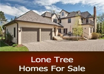 Lone Tree CO homes for sale