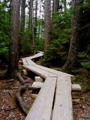 Southern Maine real estate path