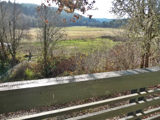 Buying Acreage Foreclosures in Oregon