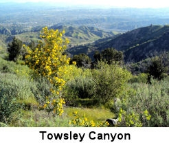 Ed Davis Park at Towsley Canyon