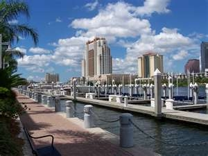 Tampa Area Moving Guide