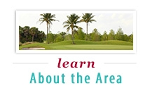 Learn about the area
