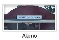 Alamo search