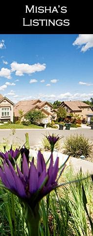 Home For Sale by MIsha Belous in Tierrasanta, El Cajon, Santee, Lakeside, Scripps Ranch, San Diego