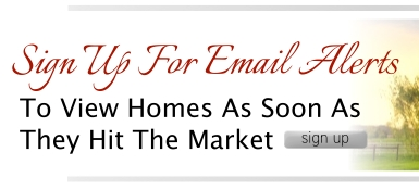 Lori Redman DM Real Estate Group Email Alerts