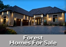 Search Forest VA homes for sale