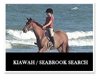 Kiawah/Seabrooke search