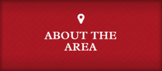 About The Area