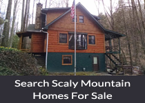 Scaly Mountain NC homes for sale