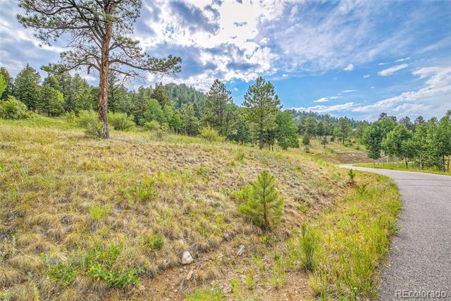 Photo of home for sale at 14515 Reserve Road, Pine CO