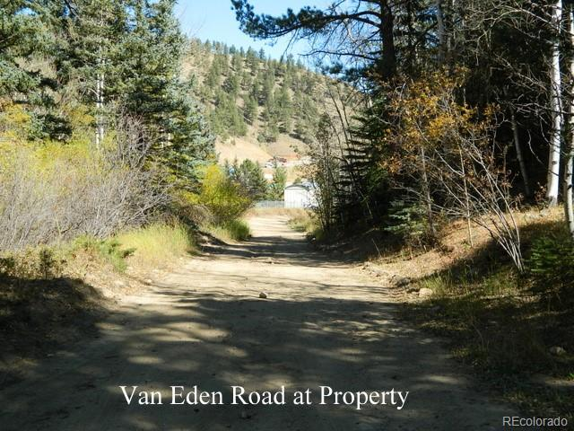 Photo of home for sale at Van Eden Rd-Onterio Mine, Idaho Springs CO