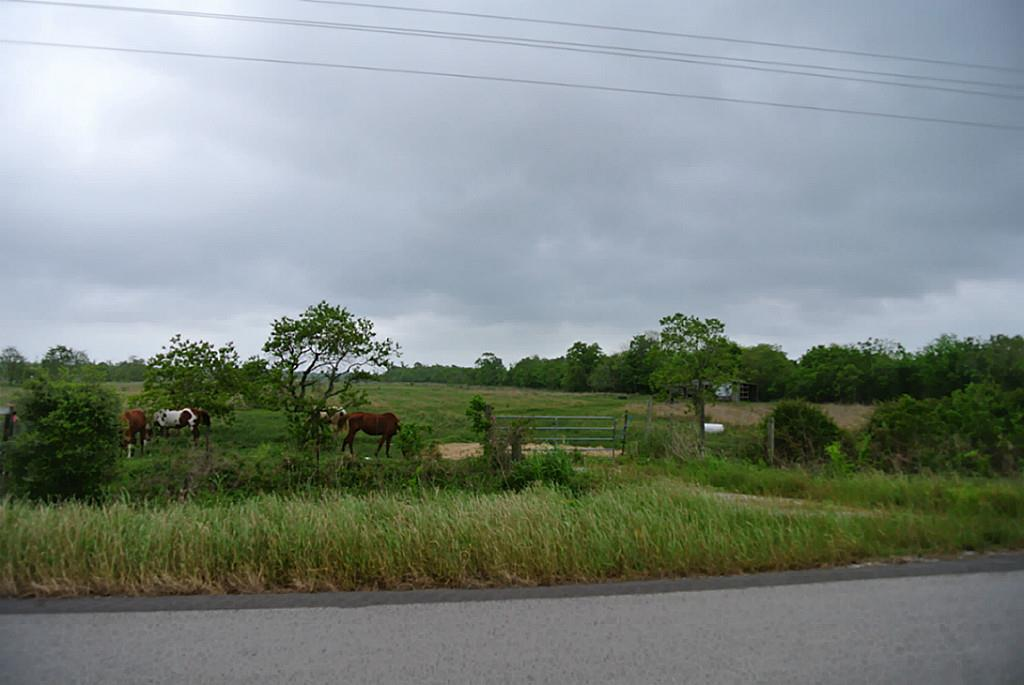 Photo of home for sale at 1115 Fm 1410 Rice Belt Road, Devers TX