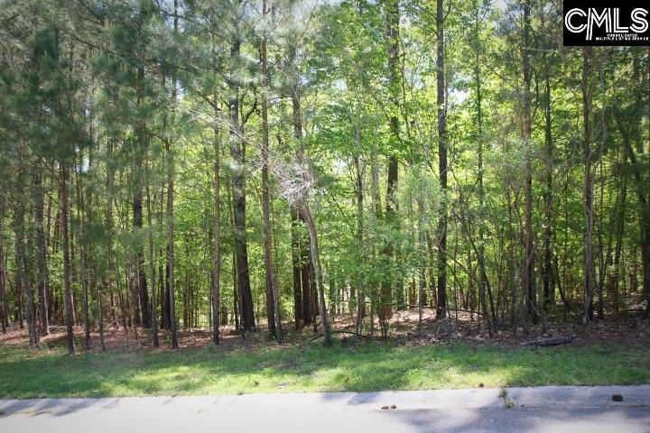 Photo of home for sale at 176 Allison Brook Court, Columbia SC