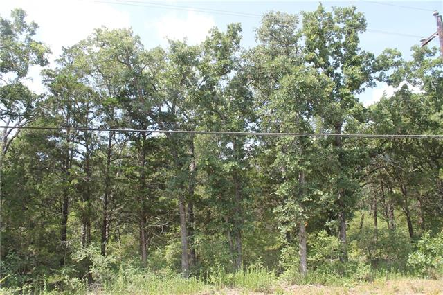 Photo of home for sale at 000 Apache LN, Smithville TX