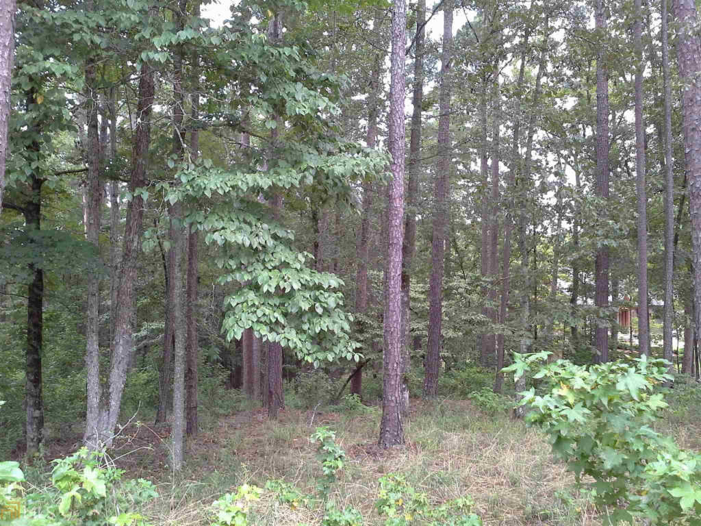 Photo of home for sale at 1031 Neils Fort, Greensboro GA