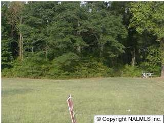 Photo of home for sale at 0 Hwy 431, Owens Cross Roads AL