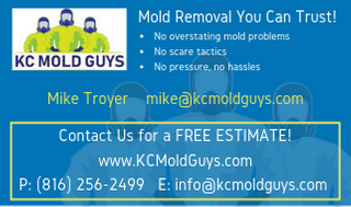 KC Mold Guys