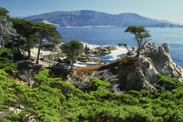 Pebble Beach, CA Real Estate Listings